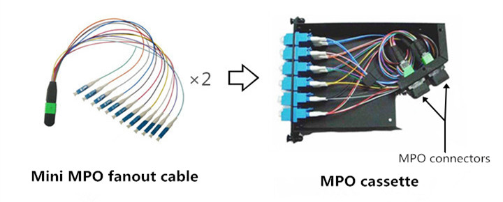 24-fiber MPO cassette with two 12-fiber MPO fanout inside