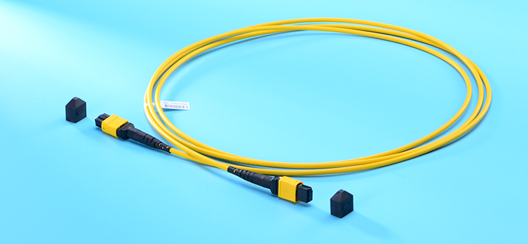 MTP/MPO trunk cable