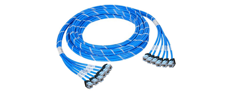 6 jack to jack copper trunk cable