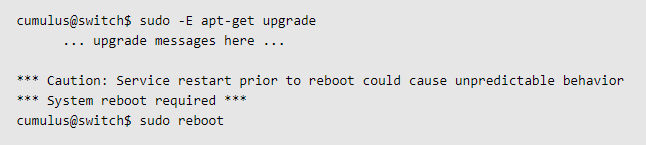 Command to Reboot the Switch